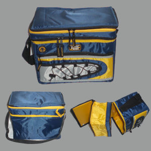 Insulated Cooler Bag for Picnic pictures & photos