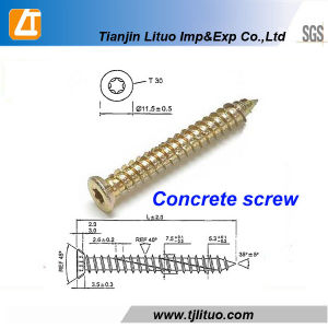 Carbon Steel Torx-30 Yellow Zinc Coating Concrete Nails pictures & photos