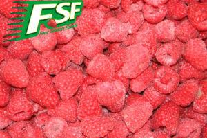 IQF Raspberries - 1