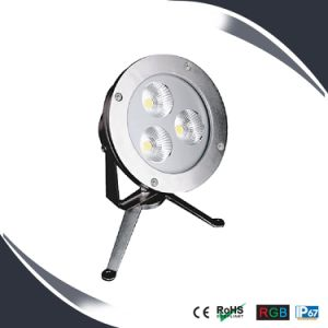 High Power IP68 LED Underwater Light/Underwater Lighting/LED Waterfall Lights pictures & photos