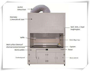Lab Use Fume Hood pictures & photos