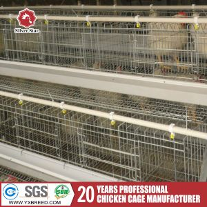 Good Thickness Egg Layer Battery Cages A3l90 for Africa Farm pictures & photos