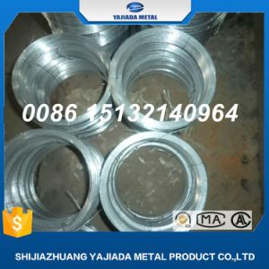 Hot Dipped Galvanized Wire Hot Dipped Galvanise Chicken Wire pictures & photos