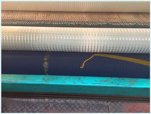 Plastic Polypropylene PP HDPE Pet Polyester Fiberglass Biaxial Uniaxial Geogrids pictures & photos