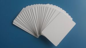 Hot! ! ! Top Quality Plastic PVC Sticker Card pictures & photos