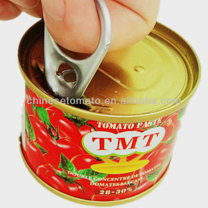 Tmt Brand Tomato Paste with Canned Packing pictures & photos