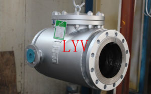 API Cast Steel Swing Flanged Check Valve pictures & photos