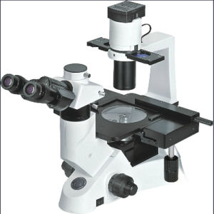 Inverted Trinocular Biological Laboratory Microscope pictures & photos