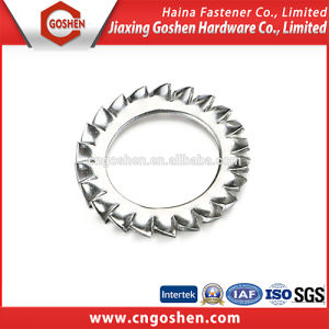 Serrated Lock Washer with External Teeth (DIN6709A) pictures & photos