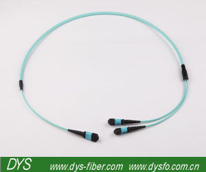 100g 24core High Density MPO/MTP Fiber Optic Patchcor pictures & photos