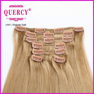 2016 Cheap Price Wholesale Clip in Hair Extension pictures & photos