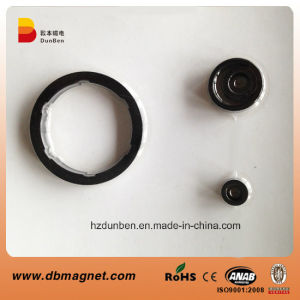 Ring Permanent Plastic Bonded NdFeB Magnet with 8 Pole Magnetized pictures & photos