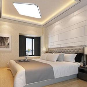 Simple Style Tri-Color Apple Design LED Ceiling Light pictures & photos