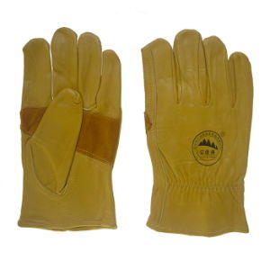 Reinforment Palm Leather Safety Workers Working Driving Gloves pictures & photos