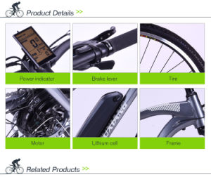 F/R Disc Brake Alloy Frame Electric Bike pictures & photos
