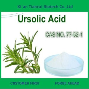Organic Rosemary Extract. Ursolic Acid Powder pictures & photos