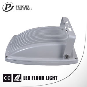 10W LED Outdoor Light for Outdoor with CE pictures & photos