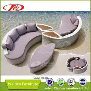 Nice Design Garden Furniture (DH-637) pictures & photos