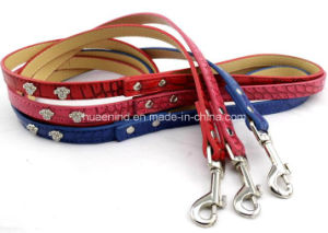 Pet Collar and Leash Dog and Cat Leash pictures & photos