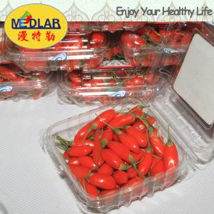 Medlar Brc ISO 9001 Kosher Dried Goji Berry pictures & photos
