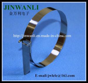 L Type Naked Stainless Steel Cable Ties pictures & photos