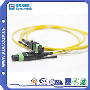 MPO-MPO with Shutter Cap Optical Fiber Jumper pictures & photos