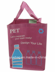 PP Woven Tote Handle Shopping Bag for Promotion (PW-0410-25)