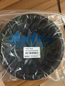 Hydraulic Oil Seal Hydraulic Seal pictures & photos