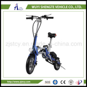 China Manufacturer Surfing Electric Scooter pictures & photos
