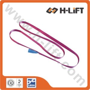 1t Polyester Endless Lifting Sling / Webbing Sling / One Way Sling pictures & photos