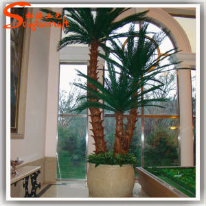 Professional Supplier Decorative Artificial Bonsai Palm Tree pictures & photos