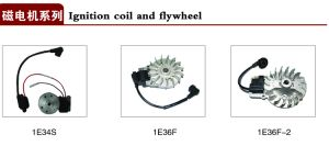 Ignition Coil and Flywheel of Gasoline Chain Saw Spare Parts for Agriculture Machinery pictures & photos