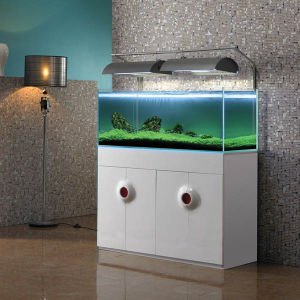 Aquarium Tank Glass