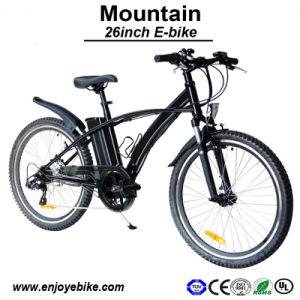 OEM Available Mountain Bike Electric Bicycle E-Bike (PE-TDE02Z)