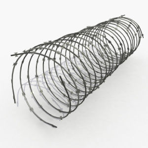 China Good Price Barbed Razor Wire (ZDRW) pictures & photos