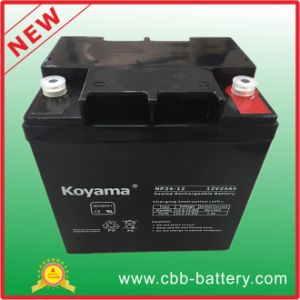 12V 24ah Lead Acid AGM Battery for UPS/Surge Protector pictures & photos