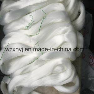 0.45 White PA6 Nylon Line pictures & photos