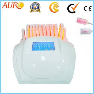 for Sale Strawberry Laser Lipo Slimming Machine pictures & photos