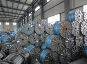 Phosphated Steel Wire for Optical Cable pictures & photos