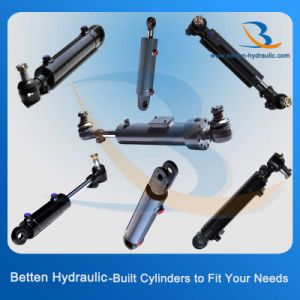 3000 Psi Hydraulic Cylinder with Swivel Ball Mounts pictures & photos