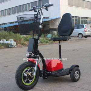 Ce Certificated Electric Motorcycle 500W for Disabled Ginger Roadpet pictures & photos