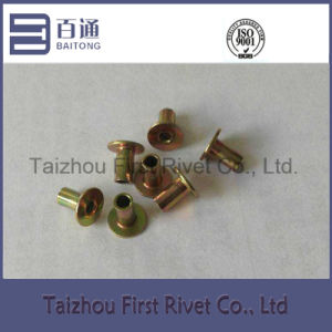 3-4 Yellow Zinc Plated Flat Head Full Tubular Steel Rivet pictures & photos