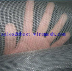 Fiberglass Window Insect Screen/Mosquito Netting/Fly Screen pictures & photos
