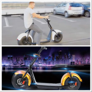2016 Fashion Citycoco/ Harley Scooter 2 Wheels Electric Motorcycle