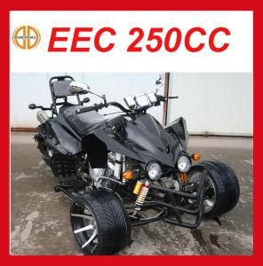 EEC 250cc 3 Wheel Cheap Motorcycle Mc-380 pictures & photos
