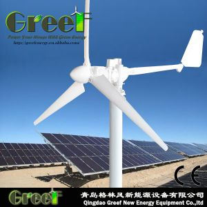 Hybrid 1kw Wind Turbine and 1kw Solar Panels System pictures & photos