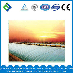 High Quality Multi Span Agricultural Film Greenhouse pictures & photos