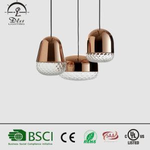 Creative Class Nut Fruit Pendant Lamp Modern New Design Chandelier pictures & photos