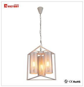 Modern Simple Style LED Pendant Light for Indoor Lighting pictures & photos
