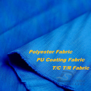 50d 290t Woven Polyester Fabric (H063) pictures & photos